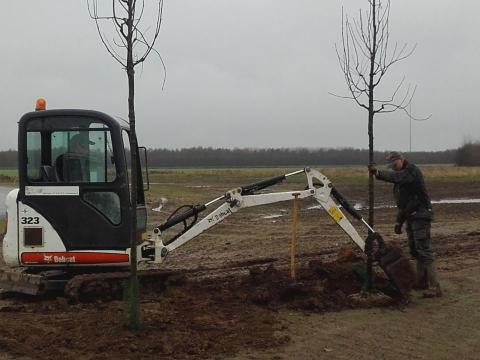 Plantearbejde på Rosinfelt Tønder